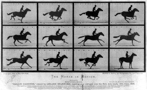 The_Horse_in_Motion